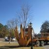 Tree Transport Truck